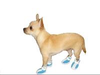 Продам одежду обувь шлейки для собак и котов отличного качества по...