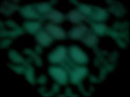 lubaxины выдумки 178522-fc1aa-36281473-h200