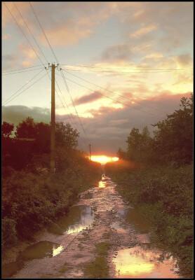 Дача. Сентябрь 2010. Закат. Грибной дождь.