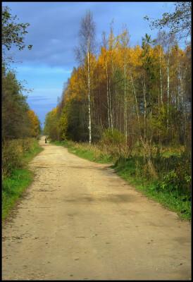 Дача. Октябрь 2010.