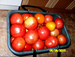 Вот какой урожай! - Страница 6 270386-395d2-35187031-h200