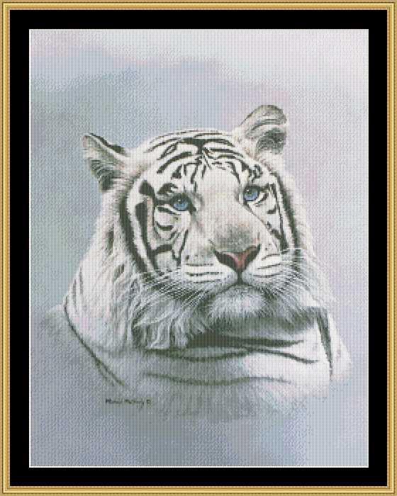 ТаС'жный тигр шагал,